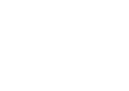 Viral-Element-Logo-White.png